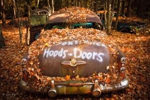 hood and doors
